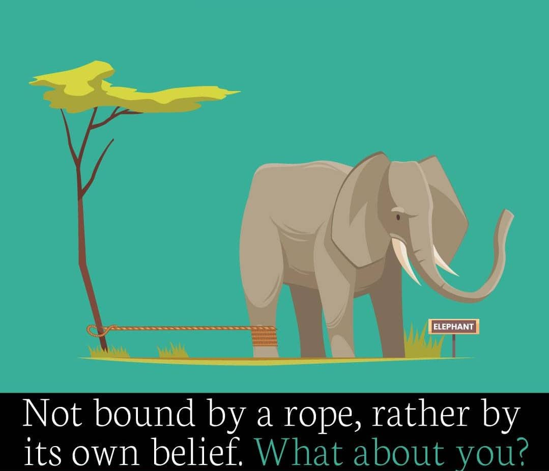 Not bound by rope, rather by its own belief